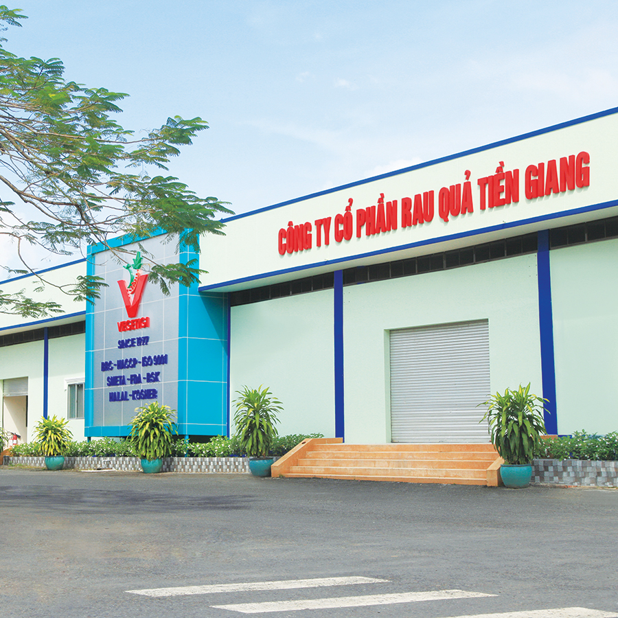 Vegetigi - Vietnam Fresh Vegetables Exporters
